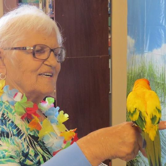 Elderly woman holding parrot